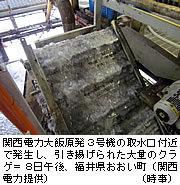 20120708at50t[1].jpg